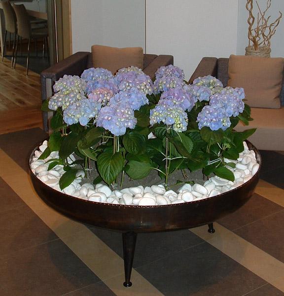 Hortenzia virágdekoráció
