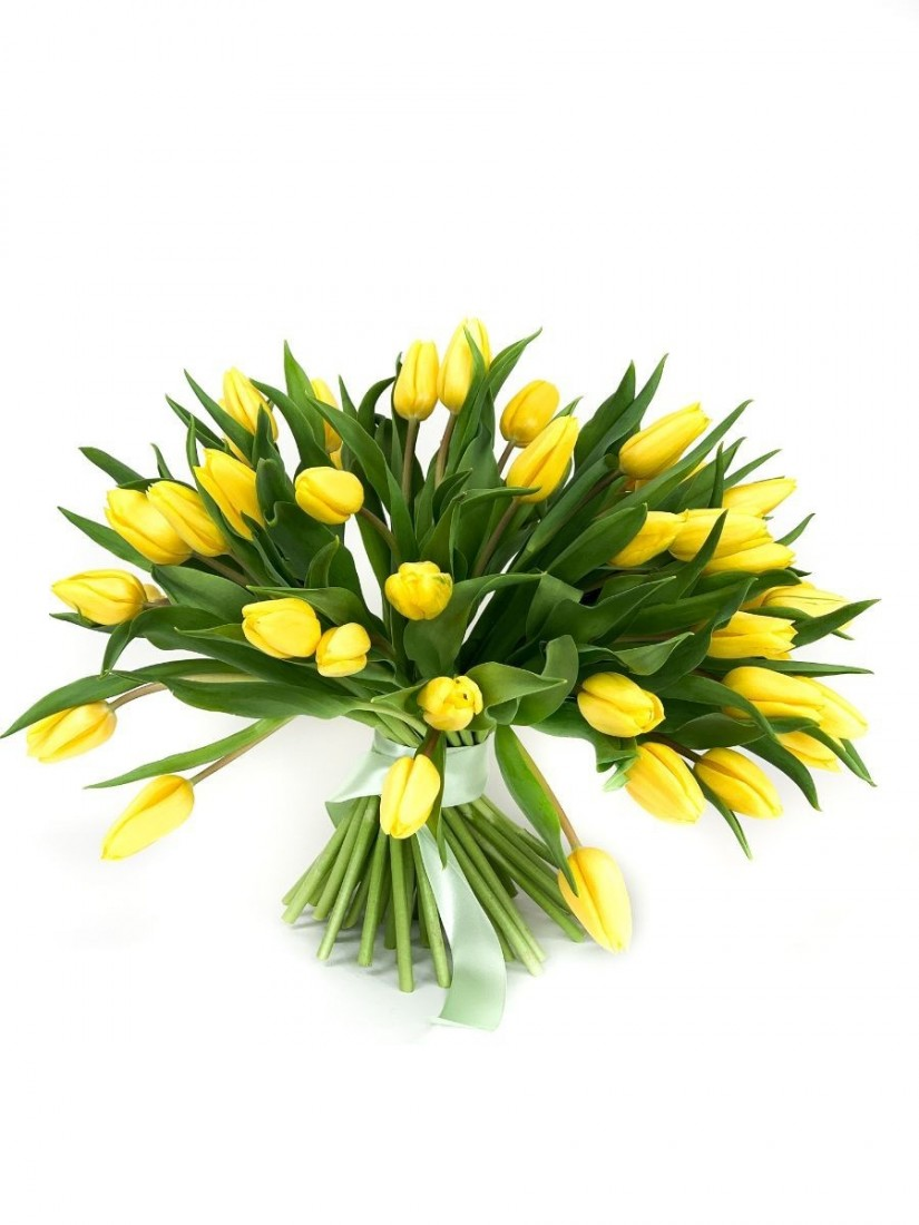 Cheerful bouquet of spring tulips