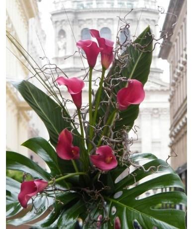 Színes kálacsokor ágrengetegben, mindig a virágbolt polcain