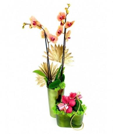 Pezsgő, fürdőgolyó, orchidea - elegáns ajándékküldemény