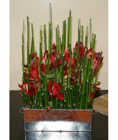 Minimalista virágkompozíció bambusszal