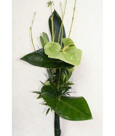 Modern bouquet of green anthuriums