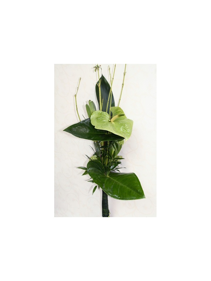 Modern bouquet of green anthuriums