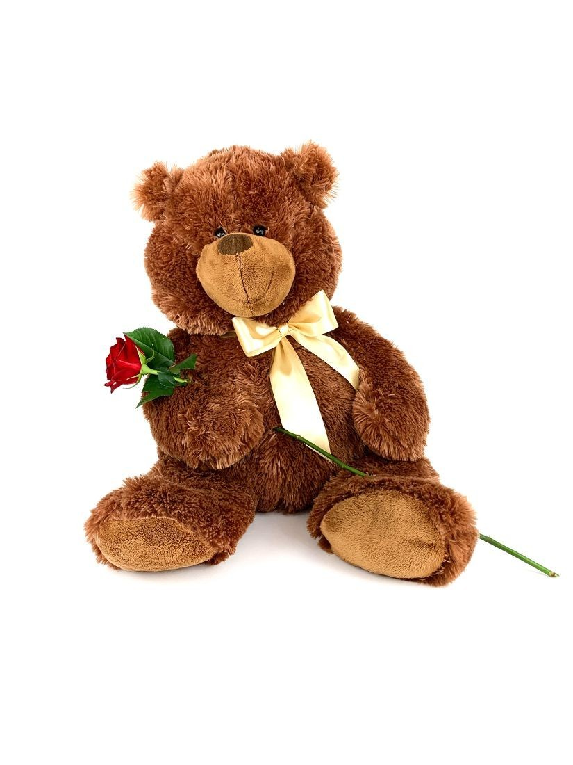 red rose with teddy bear