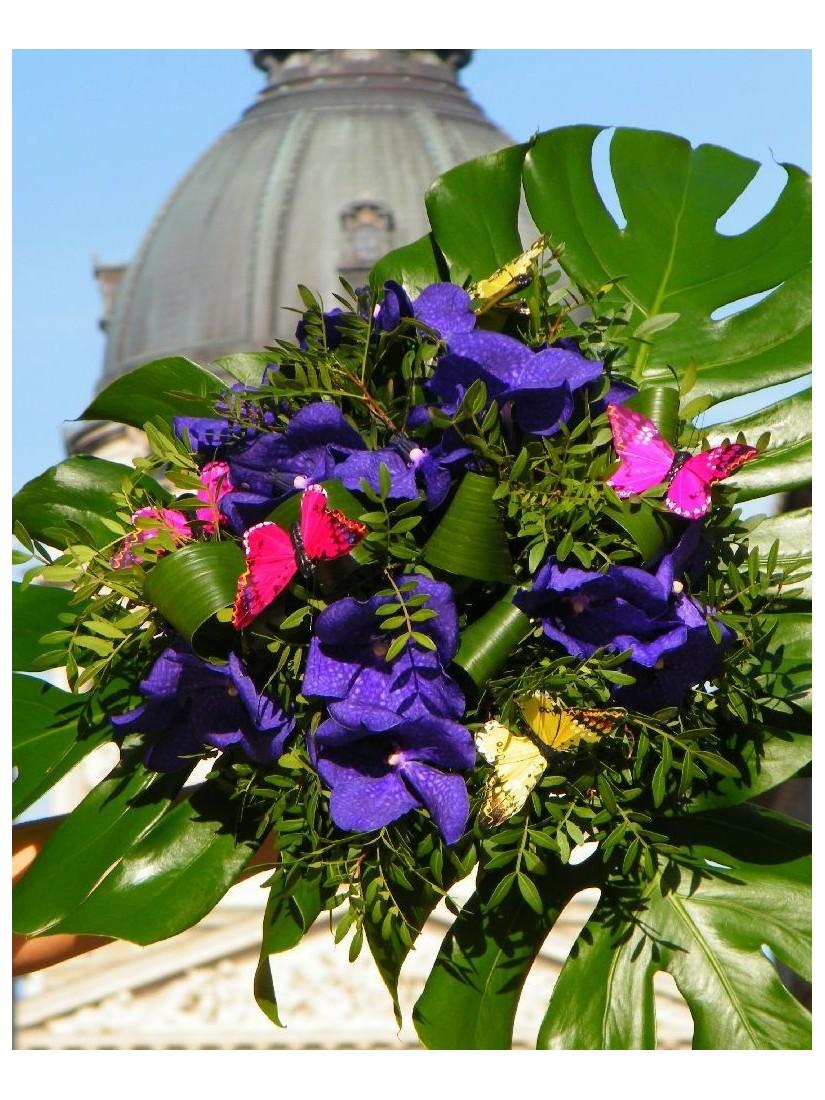 Szép lila vanda orchideák és tündéri dekorpillangók