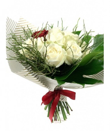 White roses embrace one stem of burning red rose