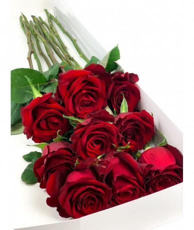 9 stems of long stemmed, red roses in an elegant box
