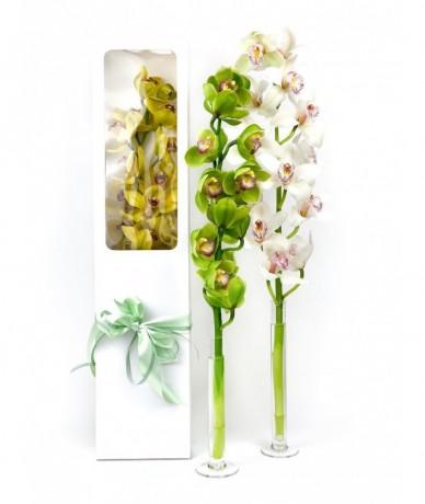 Cymbidium orchidea szál díszdobozban