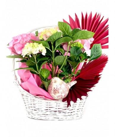 Egy kosárnyi cserepes színkavalkád gyönyörű virágokból