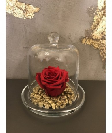 Red rose under an elegant glass dome - 10cm