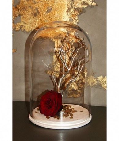 Red rose under an elegant glass dome 30cm