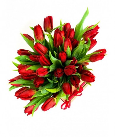 Piros tulipánok káprázatos kompozíciója arany dobozban, szalaggal