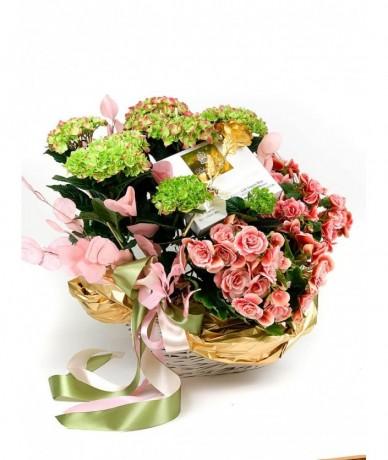 Grandiózus beültetés cserepes virágokból