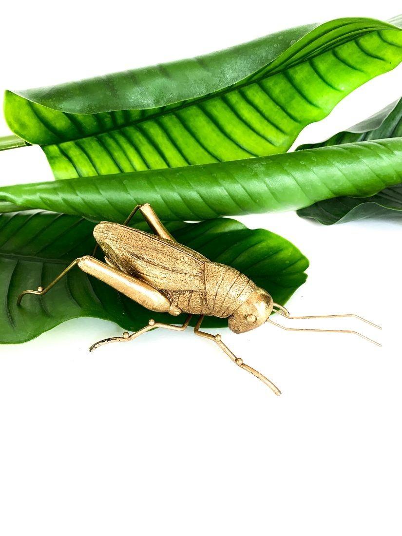 Giant gold grasshopper - gifting design