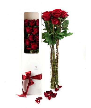 9 stems of long stemmed, red roses in an elegant box