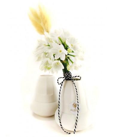 Haboskávé váza nárcisszal