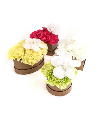 Mini flower box with carnations and orchid