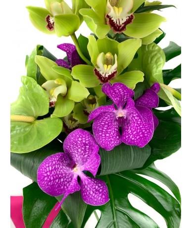 Elegant orchid mix bouquet