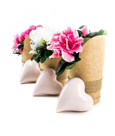 Papírtartóban mini azálea virágok