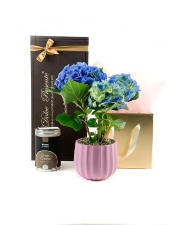 Elegáns hortenziás ajándékcsomag csokoládéval és teával