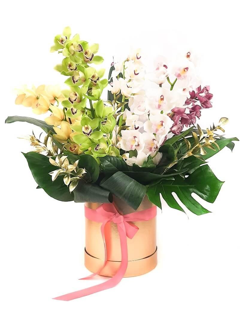 Tündöklő orchidea doboz cymbidium orchideákkal