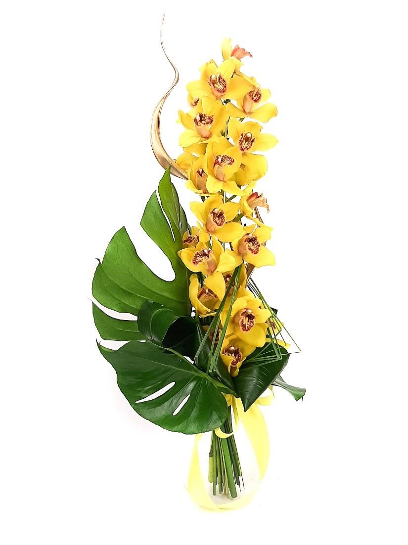 Hosszú csokor cymbidium orchideából